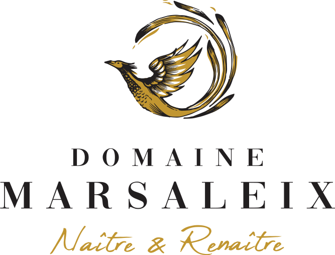 Logo Domaine MARSALEIX - Birth and Rebirth